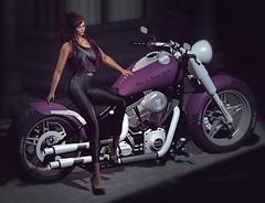 779 – Harley