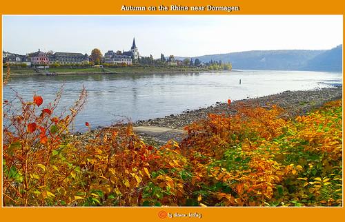 red landschaft herbst autumn farben colors rhein rheinlandpfalz landscape