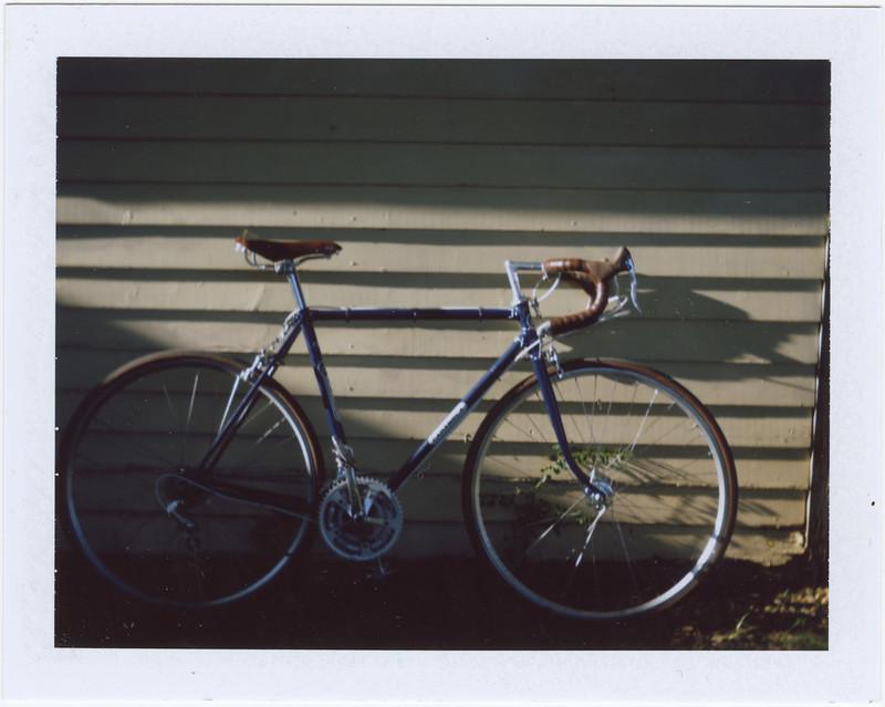 2015.08.17_ polaroid summer _lemon