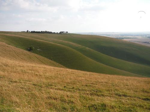 Milk Hill, serrated Down