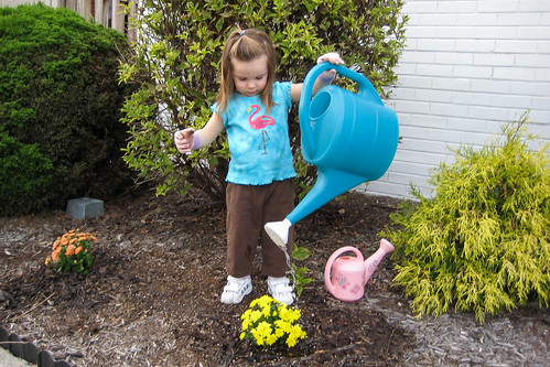 Big Watering Can