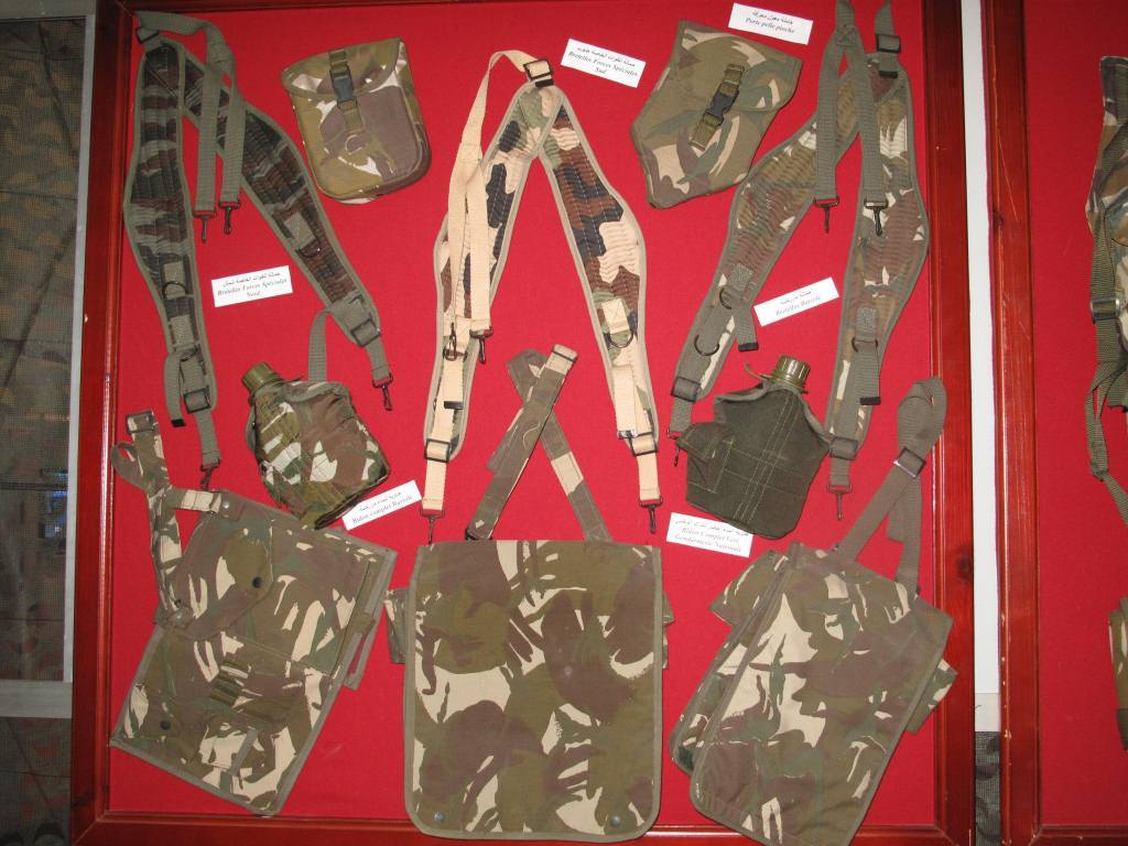 البذلات الجيش الوطني الشعبي الجزائري [ ANP / GN / DGSN / Douanes ]  - صفحة 9 32768091024_c8898099bb_o