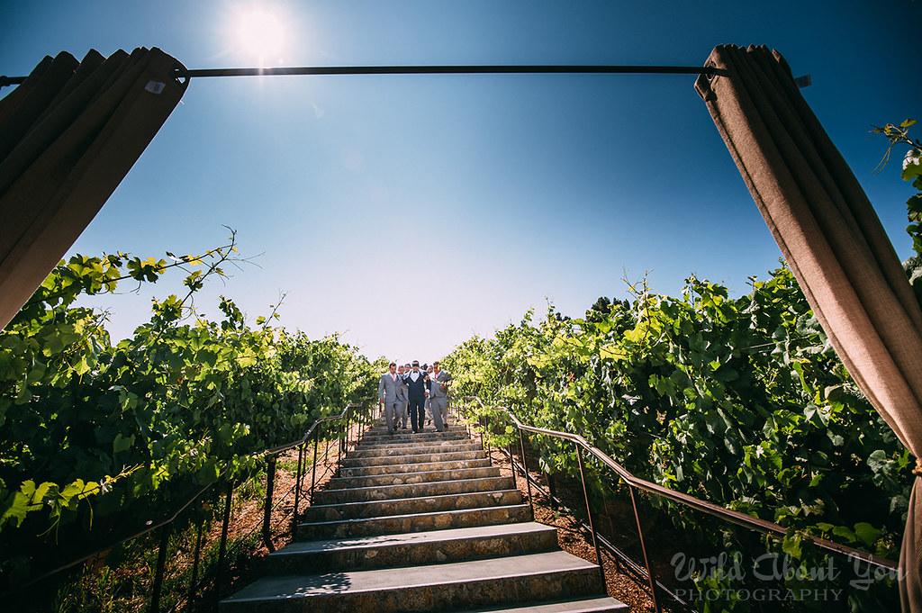 nella-terra-wedding036