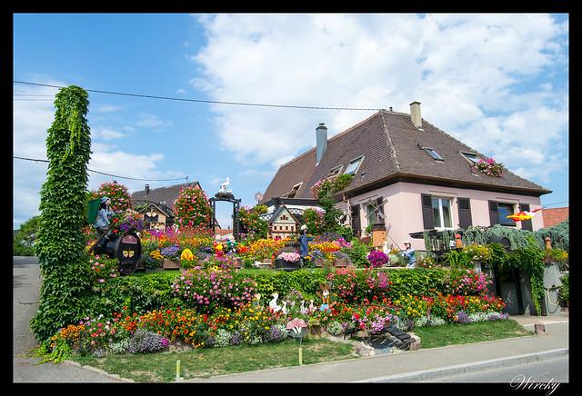 Alsacia Colmar Riquewihr Haut-Koenigsbourg Santa Odilia Estrasburgo - Casa con muñecos y flores en Zellenberg