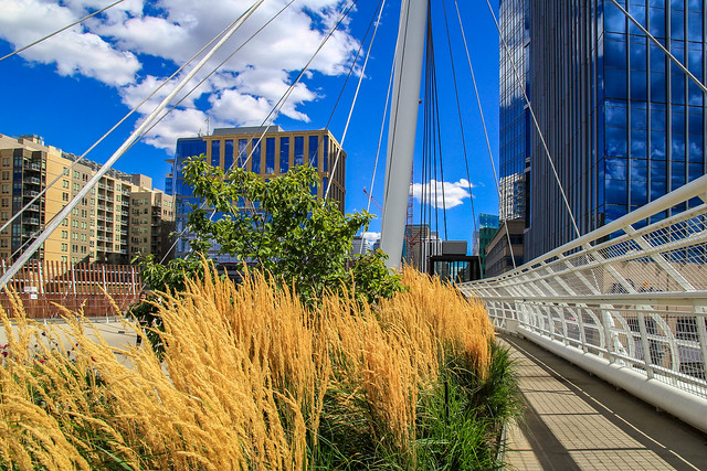 Millennium Bridge, Denver, Colorado, US
