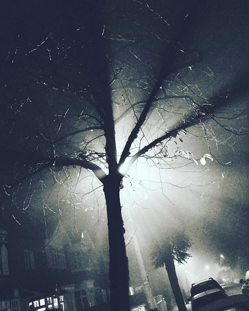Mist in the suburbs #london #thisislondon #ifttt | instagram