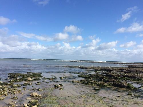 ocean, rocks, view,