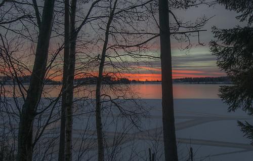 trees sunset lake silhouette landscape nikon december outdoor silhouettes crack icy icebound icecrack jyrkiliikanen