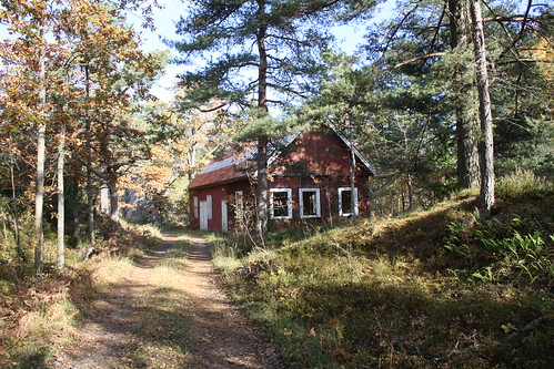 Håøya fort (50)