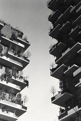 Bosco verticale - Milano
