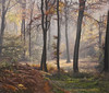 Autumn Morning Light by CeriDJones