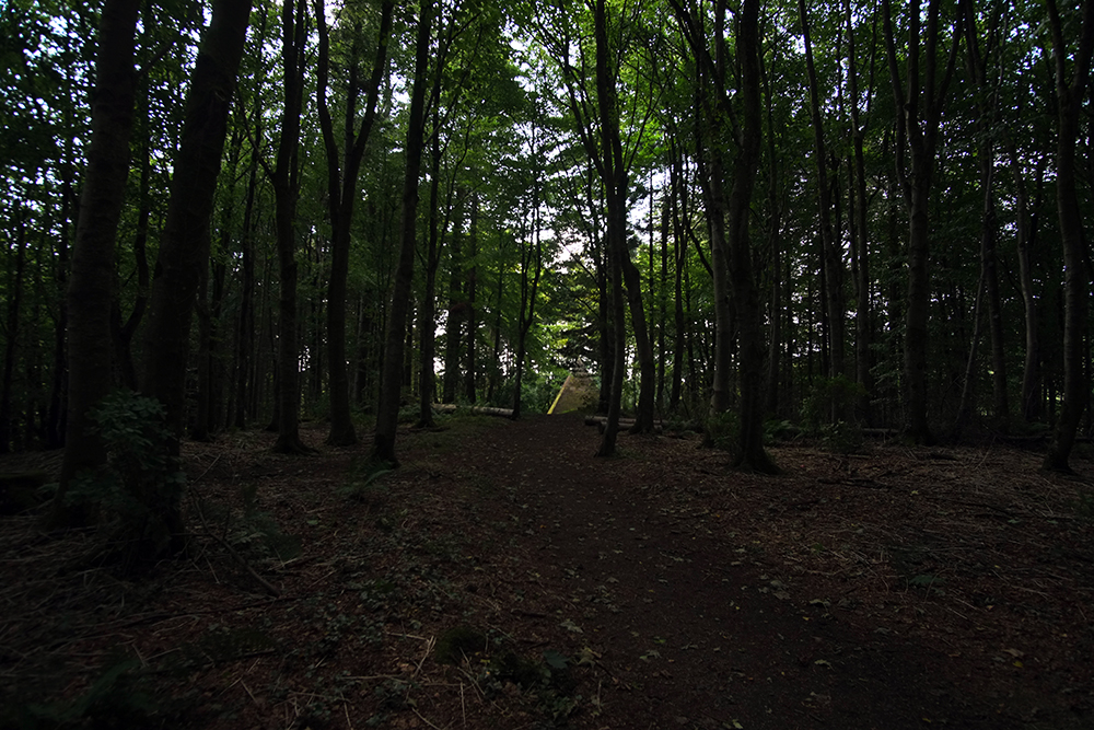 Garvagh Forest MTB Trails