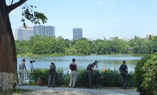 CH-Chengdu-Parc-Huanhuaxi (23)