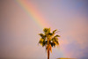 Double Rainbow in West Hollywood after Storm Lucifer
