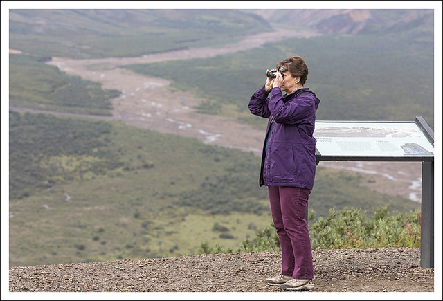 Denali 2015-08-12 11 (Carolyn On The Lookout)