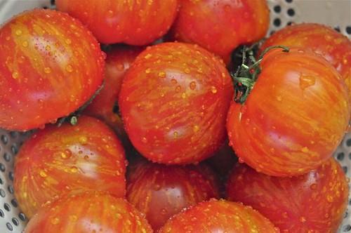tomato sauce 3