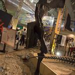 MegaDinoEx2015_2-12