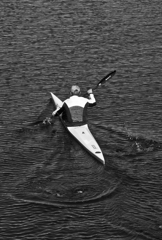 Rowing in Black and White