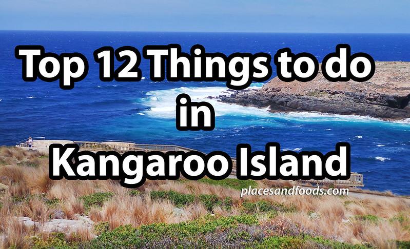 top 12 things to do in Kangaroo Island large