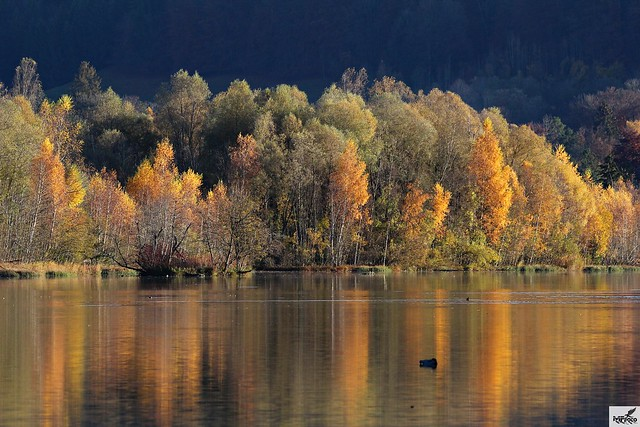 Herbstliches Finale