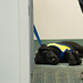 120115_RenderTheServiceDog-0041