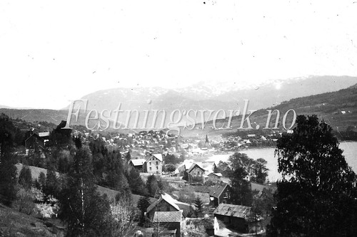 Voss Bergen distriktet (1195)