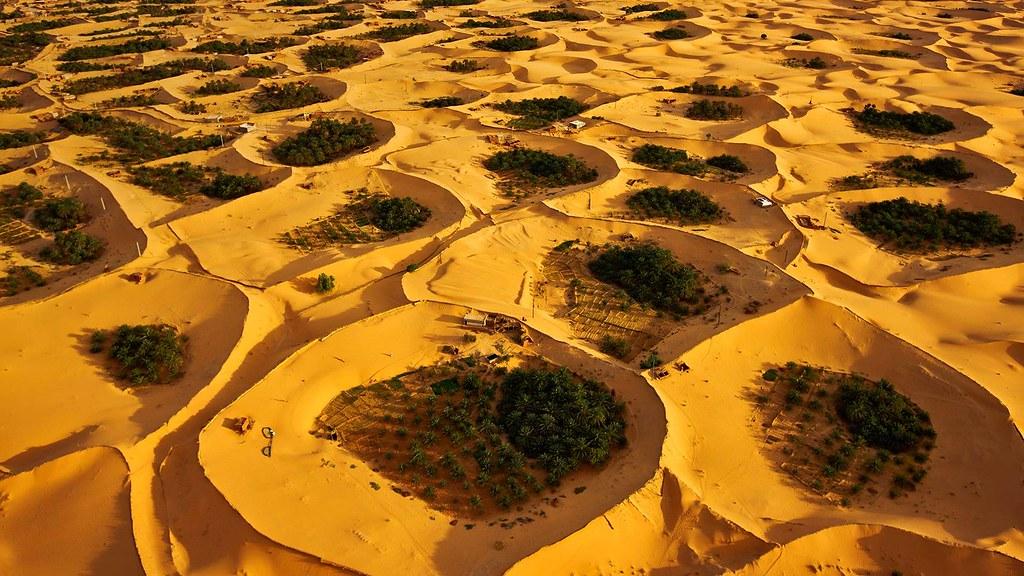 صور نادرة للطبيعة الجزائرية - صفحة 14 31848649141_460ae9aebe_b