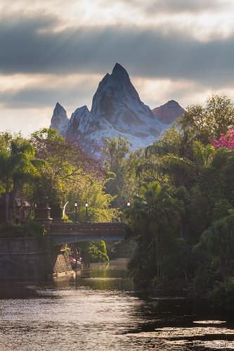 wdw waltdisneyworld disneysanimalkingdom asia mountain rollercoaster themepark
