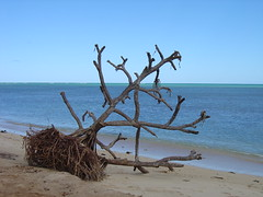 Sirey Island