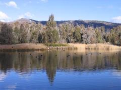 Lake at Tidbinbilla Nature Reserve