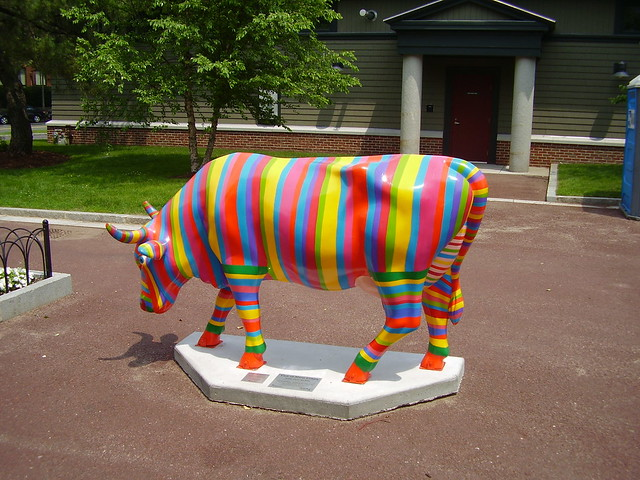 Colorful Cow | Flickr - Photo Sharing!
