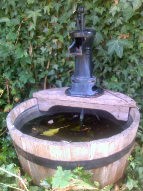 Half Barrel Pond Flickr Photo Sharing