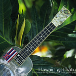 Ukulele(hawaii)