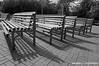 benches by Sergey Lagovskiy