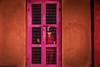 Standing in Pink by Sauvik.Acharyya