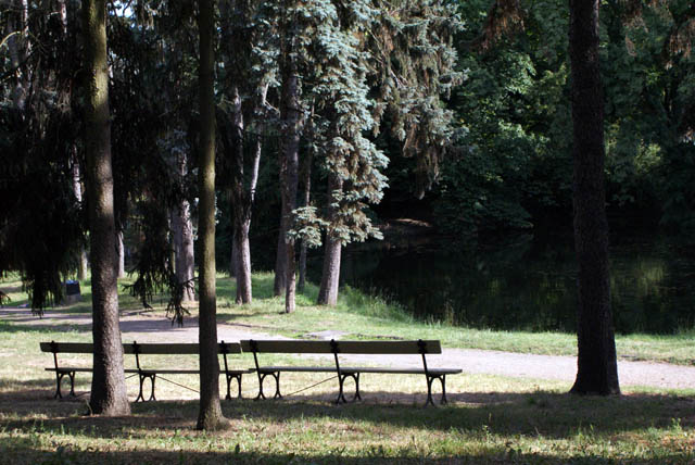 Des plans d'eaux et des bancs pour lire ou partager un moment avec les écureuils du parc.