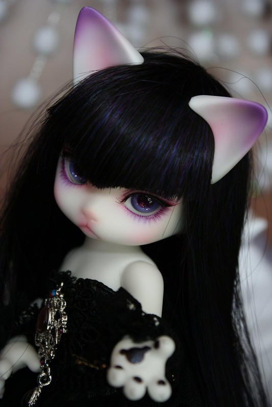 [Zuzu Delf Persi (LUTS)] Perle, Rubis & Milady (chats-chats) - Page 2 21010086804_4fb94235f0_c