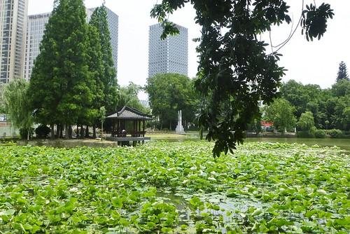 CH-Hefei -Bao Park (8)