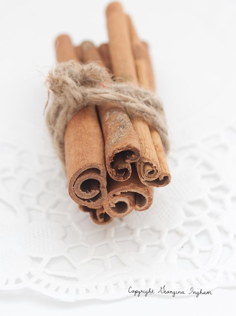 Georgina Ingham - Photograph of Cinnamon Sticks