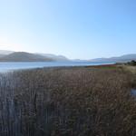 Di, 03.11.15 - 10:35 - Parque Nacional Chiloe