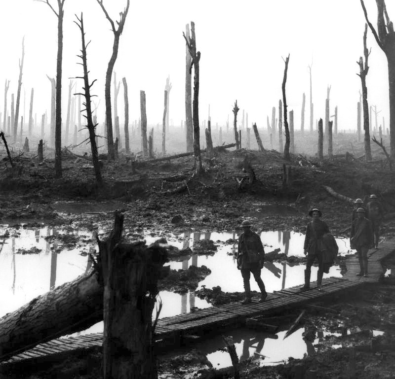 Soldiers of an Australian 4th Division field artillery brigade on a duckboard track passing through Chateau Wood, near Hooge in the Ypres salient, 29 October 1917