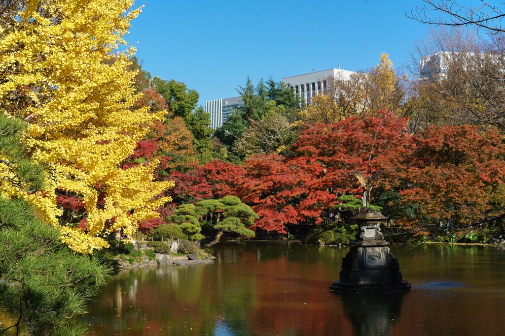 Autumn pond in Hibiya Park