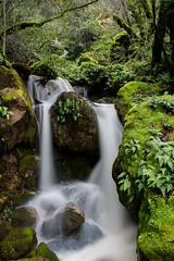 Waterfall-Near-Mercuryville