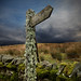 Small photo of Lichen covered signpost, Alston, Cumbria, UK.