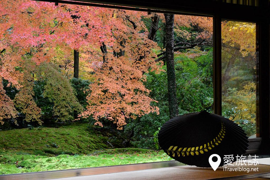 京都赏枫景点 琉璃光院 34