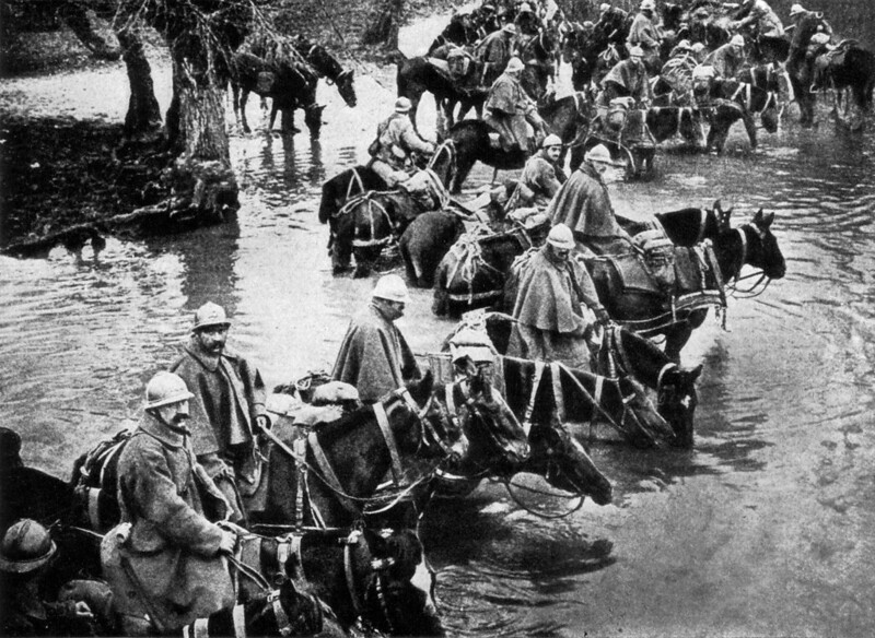 French horses crossing a river on their way to Verdun