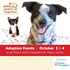 Looking to adopt!? This weekend is an excellent time to adopt! Acadiana Humane Society is participating in Petco's 50th Anniversary event! We are looking to have six or more adoptions this weekend! Please check out some of our adoptable pets online at htt