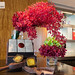 Vibrant red flora at the bar area