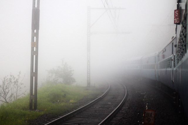 track3, dense white fog is seen to the left side of the photo, green shrubbery is on the ground