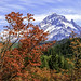 Mt Hood Autumn by TJMORTON1